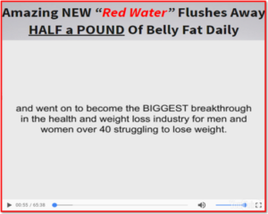 the-flat-belly-flush-e