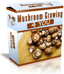 Mushroom_Growing_4_You_System