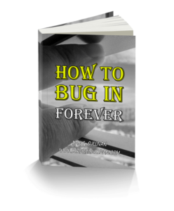 How-To-Bug-In-Forever